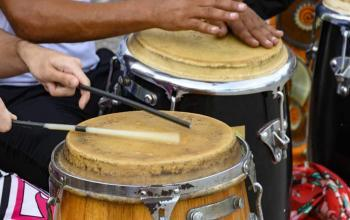 Types of Percussion Instruments